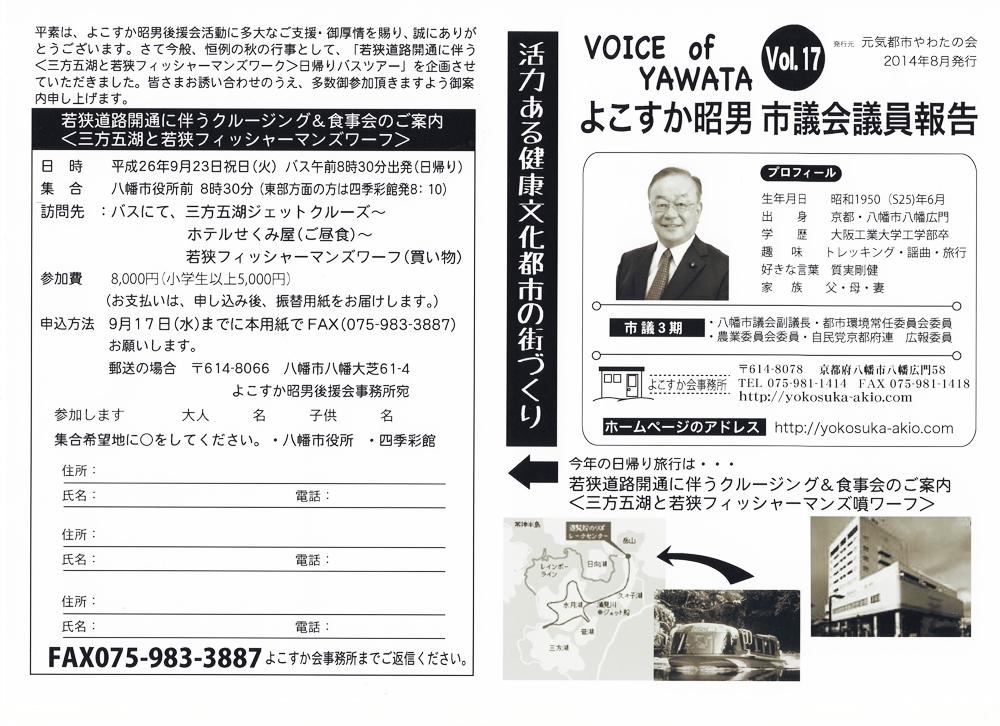 Voice17
